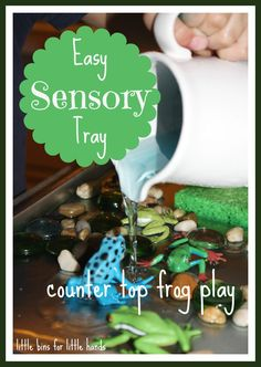 Frog Sensory Tray Play Fun With Frogs And Sponges [pinit] Hands On Sensory Play & Practical Life Skills too! Hands-On Play is the best! Children love to learn by doing, exploring, creating, discovering, and touching. Let them use their hands to soak in all the world has to offer. Enrich their lives with stimulating play...Read More »
