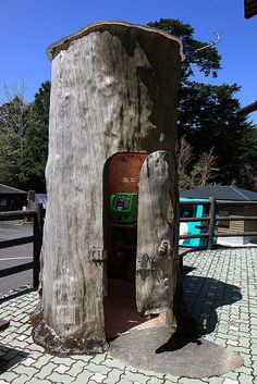 Tree shaped telephone booth, Yakushima Island, National Park, Japan by Michael Stephens