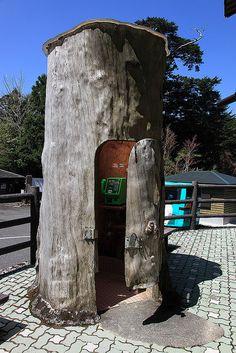 Tree shaped telephone booth, Yakushima Island, National Park, Japan by Michael Stephens