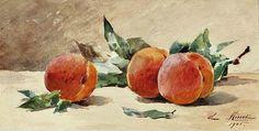 Peaches Gouache , over pencil