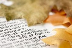 7 Bible Verses for Giving Thanks and Praise