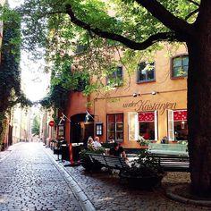 Hidden Gem: Brända tomten in the Old Town. Tiny square with a big chestnut tree to rest under. It's a magical spot. #visitstockholm #brändatomten #underkastanjen