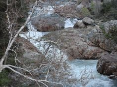 Drive alongside beautiful streams in Kings Canyon National Park. #ANCORoadTripContest