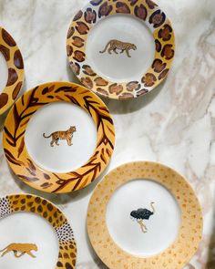 e Plate Sets, 6 Inches, Decorative Plates, Chips, Porcelain, Collections, Tableware, Porcelain Ceramics, Dinnerware