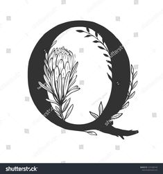 Vector Capital Letter Q Decorated Flowers Stock Vector (Royalty Free) 1531968140 Royalty Free Stock Photos, Lettering, Illustration, Flowers, Pictures, Image, Decor, Photos, Decoration