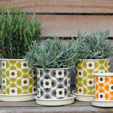 Retro planters from heals