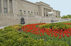 A bed of tulips bloom in front of the Nelson-Atkins Museum of Art. Surrounded by the 17-acre Kansas City Sculpture Park, a Claes Oldenburg shuttlecock and a sculpture by Henry Moore stand in front of the building.