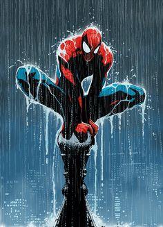 // daveseguin: Spider-Man in the Rain