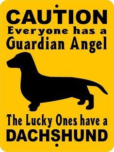 DACHSHUND DOG SIGN GADAC #dachshund DOG SIGN GADACH