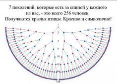 Светлана Фоминых