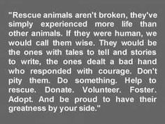 simply well said. my rescue babies are so amazing!