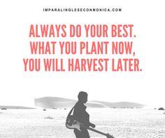 Fai sempre del tuo meglio, se semini oggi, domani avrai qualcosa da raccogliere! Impara l'inglese con Monica