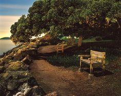Dans 2 minutes, 2 personnes viendront s'asseoir dans ces bancs. Écris leur conversation.