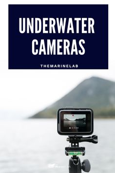You can end up with low quality, blurry, and unimpressive photos if you don't take the time to find one of the right underwater cameras for snorkeling Underwater Photos, Underwater Photography, Waterproof Camera Case, Boating Tips, Fast Shutter Speed, Photography Settings, Best Scuba Diving, Fishing Life, Sports Equipment