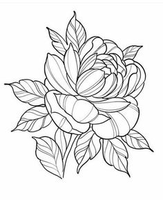Hottest Absolutely Free Peonies drawing Thoughts The peony is definitely insanely lovely flowering coming from spring season so that you can summer—together Diy Tattoo, Doodle Tattoo, Tattoo Motive, Tattoo Sketches, Tattoo Drawings, Drawing Sketches, Art Drawings, Drawing Drawing, Drawing Ideas