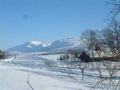 Blåfjella - Skjækerfjella National Park #centralnorway #norway #travel  Photo: Visit Innherred