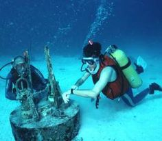 A career in marine biology?