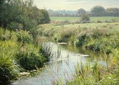"""""""Summer banks"""" (2011) [Sold] By Peter Barker, from Banbury, Oxfordrshire, England (current location, South Luffenham, England) - oil on linen canvas; 16 x 22 in - http://www.peterbarkerpaintings.co.uk/ https://www.facebook.com/PeterBarkerARSMA"""
