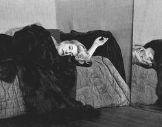 Catherine Deneuve : Photo