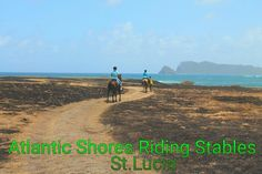 Horse riding in St.Lucia