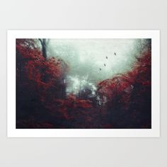 Collect your choice of gallery quality Giclée, or fine art prints custom trimmed by hand in a variety of sizes with a white border for framing.#wallart #nature #forest #fineart #mood