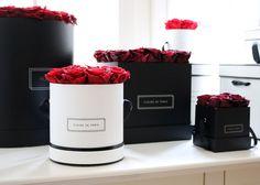 Fleurs de Paris - Medium; bridal pink; box weiß rund