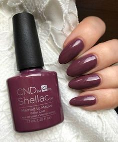 Originaler CND Shellac Married to the Mauve Color Coat Nagellack Shellac Pedicure, Shellac Gel Polish, Shellac Nail Colors, Pedicure Nail Designs, Mauve Nails, Glitter Nail Polish, Shellac Nails, Gel Nail Art, Gel Manicure