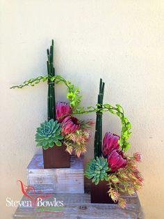 Protea and succulent flower arrangement. Designed by Steven Bowles Creative, Naples Florida Florist and Event Planner. www.stevenbowlescreative.com