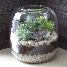 Terrario hecho con un botellon, piedritas, tierra y suculentas, ideal para interiores.