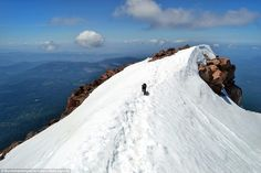 The cat (pictured on Cascade volcano in Oregon) doesn't know the difference between 14,000...