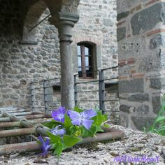 Romantic view - Romantic view into the Castle of Lusuolo, Mulazzo, MS.. Tuscany to discover..