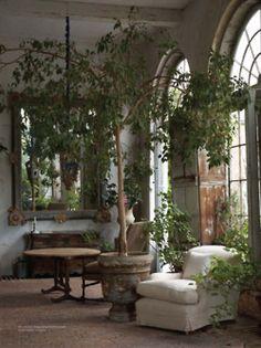 indoor plant, bringing green into the loft! cement planter/garden look