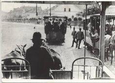 Timisoara - Tramvai tras de cai