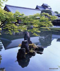 Summer Tenryū-ji ✿