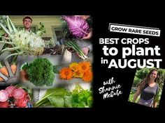 GROW RARE SEEDS | Best Crops to Plant in August - YouTube