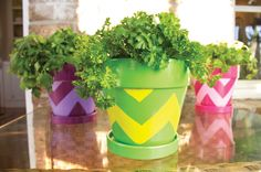 DecoArt® Chevron Pots  #claypot #craft
