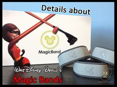 Answers to Questions About Disney Magic Bands and Fastpass Plus