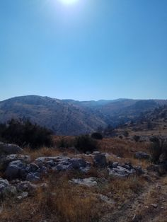 Nice HIKING day near Abu-Gosh Israel #hiking #camping #outdoors #nature #travel #backpacking #adventure #marmot #outdoor #mountains #photography