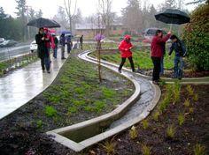 Stormwater management, eco art, nature art, Artful Rainwater Design, green infrastructure, design event, Penn State University, Stuckeman School of Architecture and Landscape Architecture