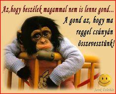 Karma, Comedy, Funny Quotes, Jokes, Lol, Geek, Figurative, Humor, Funny Phrases