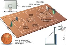 15 Ideas De Deportes Medidas Cancha De Futbol Cancha De Baloncesto Canchas