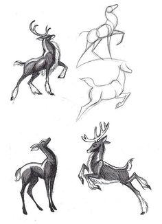 R f rences cerf techniques de dessin cerf biche - Comment dessiner un cerf ...