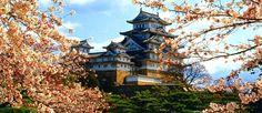 Embarque para o Japão com passagens aéreas a partir de R$ 1.857 :: Jacytan Melo Passagens