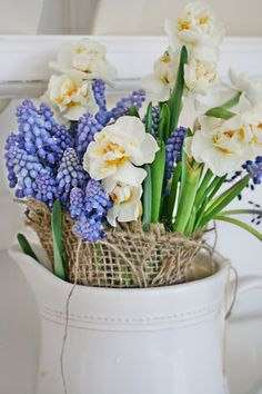 I like the burlap. Nice support and very informal. Grape hyacinth are everywhere right now. Yay!