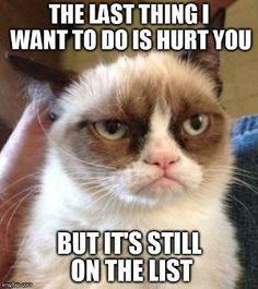 Grumpy cat by Nina Maltese