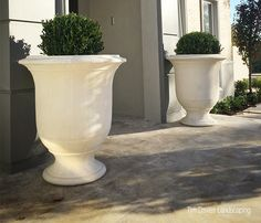 The French Anduze planters or 'Vases d'Anduze', first appeared in the 16th century in the region of Anduze. By the 19th century they had been adopted by the wealthy.    The Anduze planteris made from premium GRC - A composite material, consisting of high quality fiberglassand cement which makes it strong, durable, UV resistant and impenetrable to water. It is 75% lighter than cast concrete and 4 to 5 times stronger.
