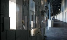 Sydney Theatre Company Honour Wall | SEGD