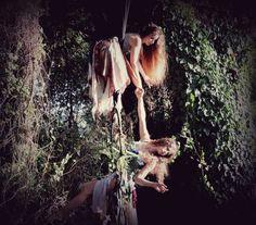aerial hoop fairies Dora and Tzo