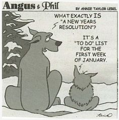 Here is some New Year Resolutions humor for you. Good luck for the whole year!