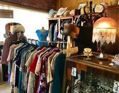Bird, Vintage, Home Decor, Decoration Home, Room Decor, Birds, Vintage Comics, Home Interior Design, Home Decoration